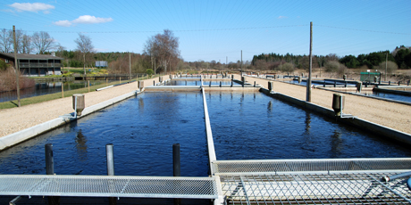 Aquaculture plant. Photo: Peter V. Skov