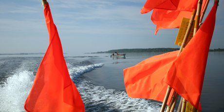 Nørrefjord. Photo: Line Reeh
